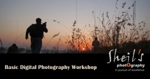 Basic Digital Photography Workshop @ Sheil's Photography